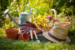 Get Started in Gardening This Spring