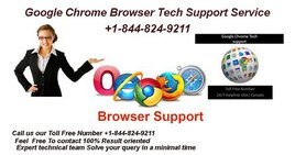 Browser Support Number