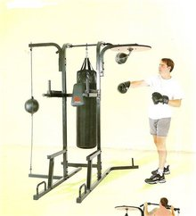 Professional Factory Cheap Different Types Classic Free Standing Boxing Bag With Good Price
